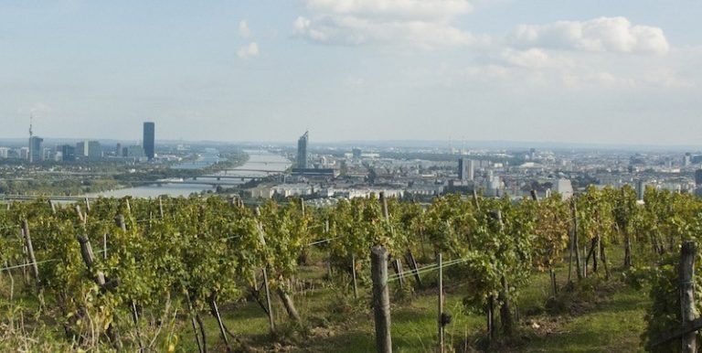 Who Needs Change? On smoking, wineries and the Viennese way