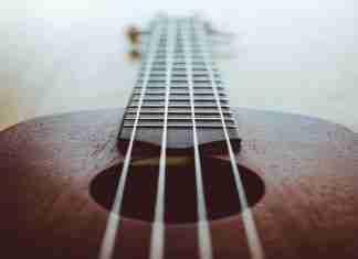 ukulele vienna