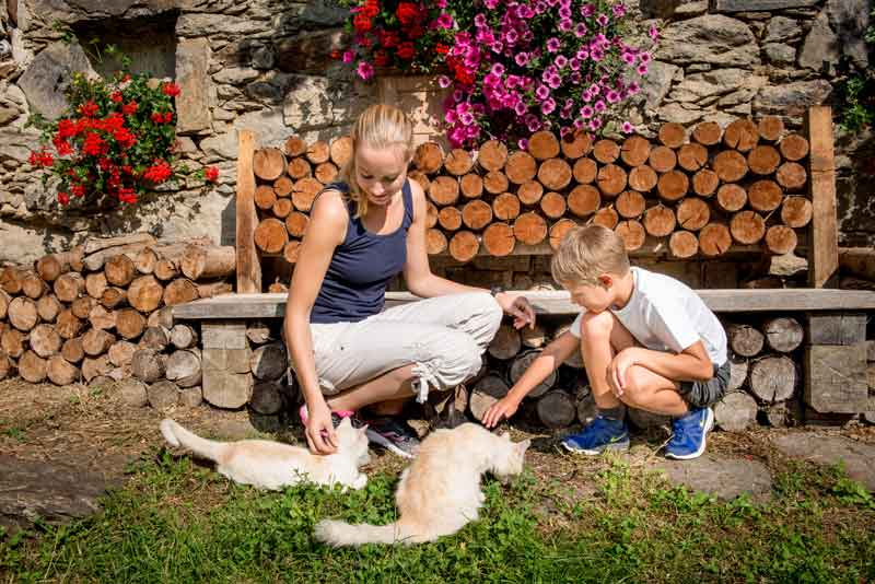 Farm stays are not only relaxing; they're also an excellent way to get city kids to connect with nature and animals.Photo ©Waldviertel Tourismus/ Christoph Kerschbaum
