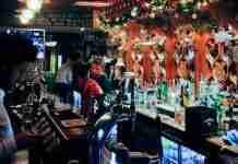 irish bars vienna
