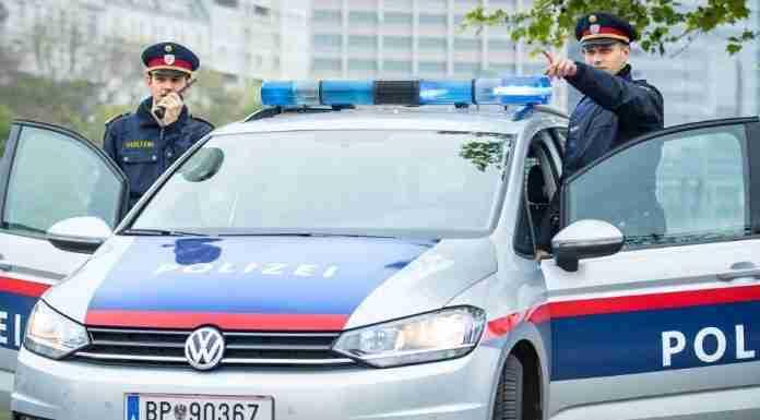 Vienna Police Brutality at FridaysforFuture demos