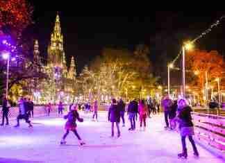 activities in vienna