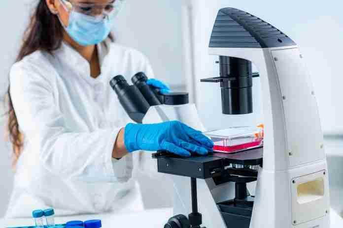 Vienna UP'21 Biotech Medtech
