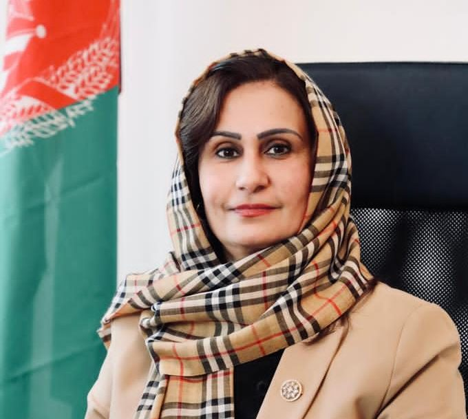"""Afghan Ambassador to Austria: """"This will set our country back a century."""""""