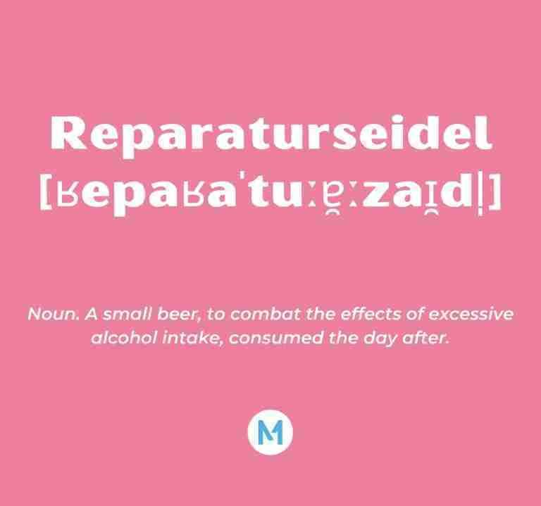 <i>Word of the Week:</i> Reparaturseidel [ʁepaʁaˈtuːɐ̯ːzaɪ̯dl̩]