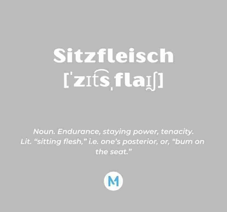 <i>Word of the Week:</i> Sitzfleisch [ˈzɪt͡sˌflaɪ̯ʃ]